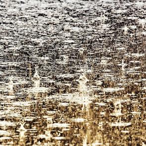 IMG_0609_rain_ms