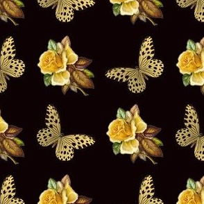 Spotted_butterfly_Yellow_rose_3