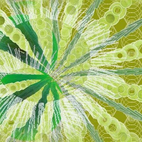 sea_urchin_green