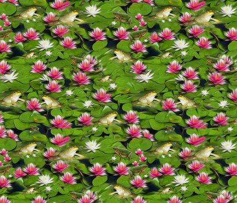 Rfrogsandlilies58x36x150_shop_preview