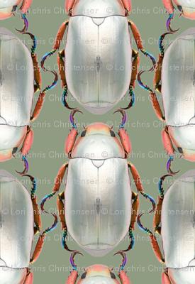 silver scarab