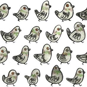 Pigeons! (large)