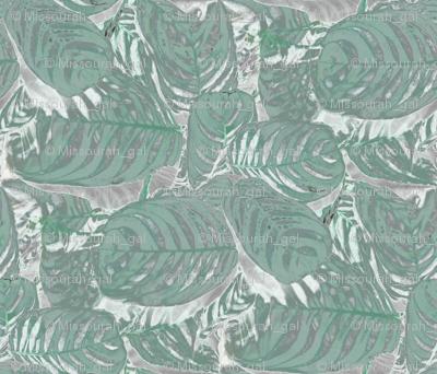 Seafoam Green Prayer Plant 21 x 18