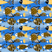 goldfishes