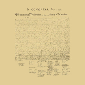 "17x20"" Declaration of Independence, antique"
