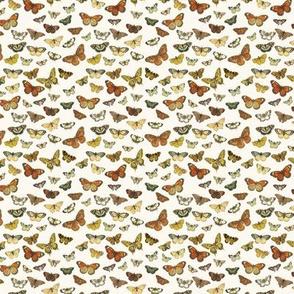 Flutter Butterflies Au Naturel, mini