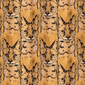 Maple Serval
