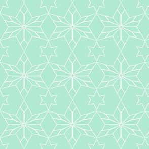 Rustic Star on Mint