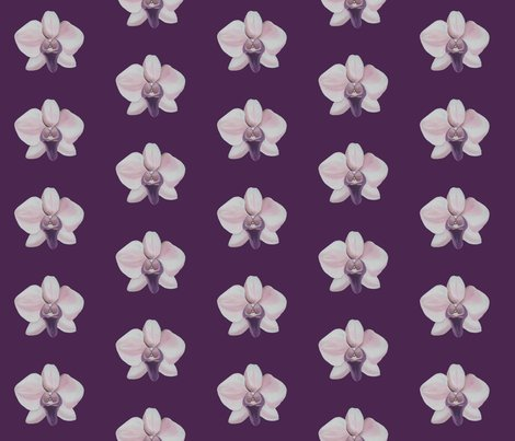 Rrlilac_orchid_shop_preview