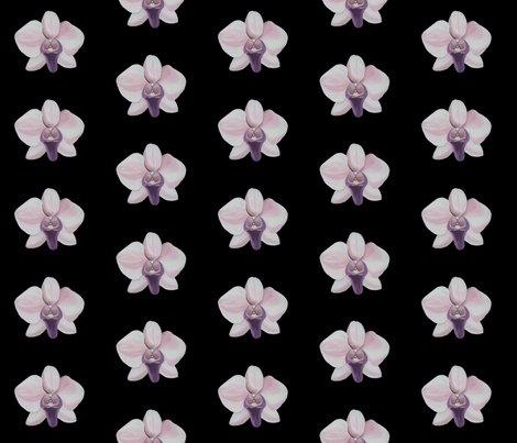 Rrlilac_orchid_black_shop_preview