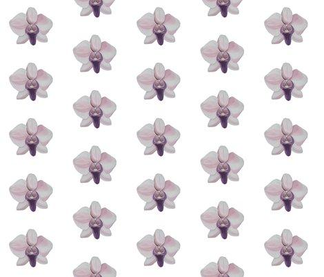 Rrlilac_orchid_white_shop_preview