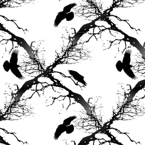 Crow Flock On Branches