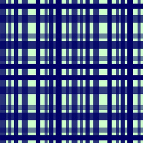 Vibrant Plaid Navy Blue & Ghost Green
