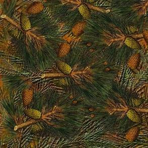 Pine Forest Floor