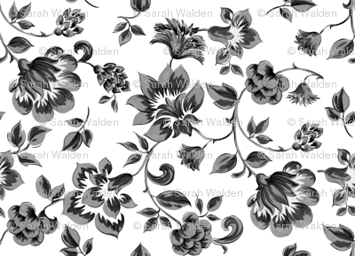 Fleurs de Provence ~ Black and White