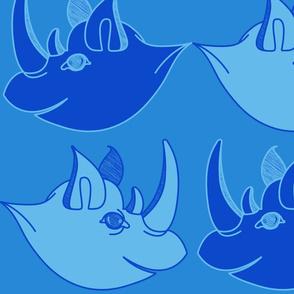 Rhino1-02-01-01