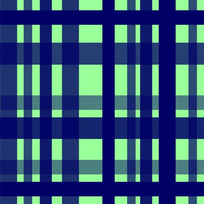 Vibrant Plaid Navy Blue & Mint Green