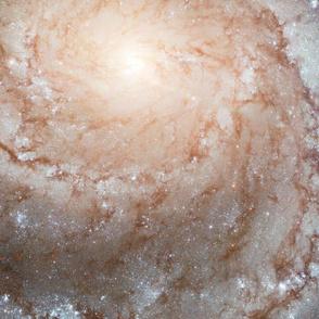 HD Largest Galaxy Portrait B