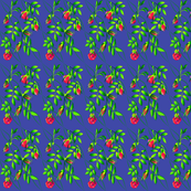 roses-small