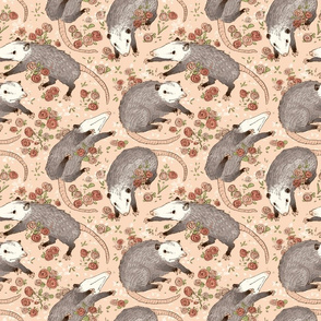 Opossums and roses!