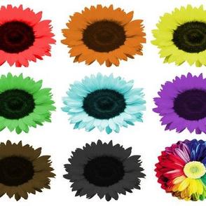 Sunflower_Mania