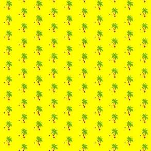 Kimber's palm trees