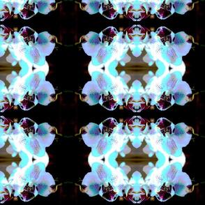 IMG_0120addalittlecolor