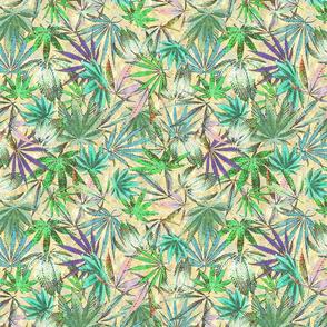 Cannabis Blue