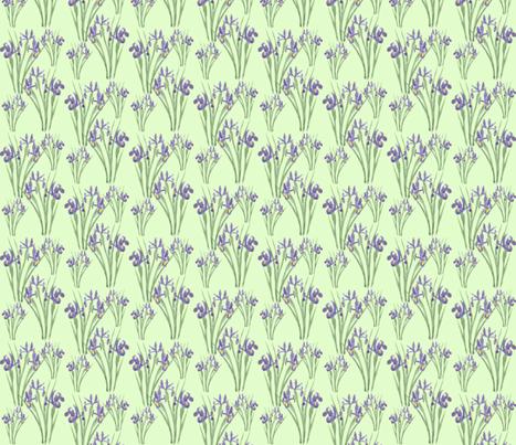 Irises on Green (version 2) fabric by jenithea on Spoonflower - custom fabric