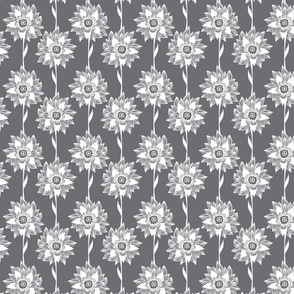 White tropical flowers on gray background