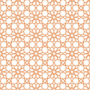 ASSILA_orange 2