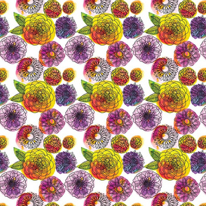 Ditzy flowers