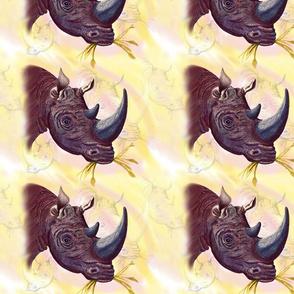 Chipembere.... Rhinoceros.