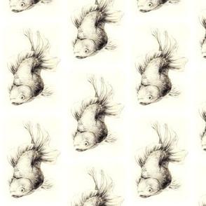 Small Archingfish