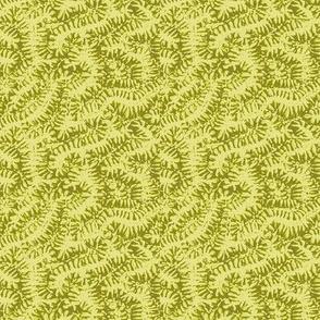 coral 6 greens