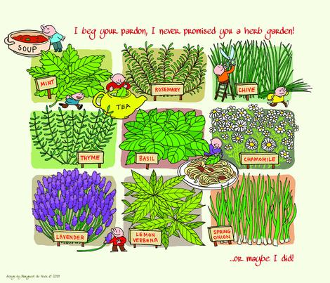 herb garden tea towel fabric by margreetdeheer on Spoonflower - custom fabric