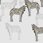 Zebra_final2_shop_thumb