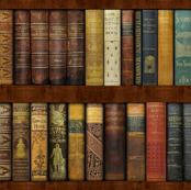 Monsieur Fancypantaloons' Instant Bookcase ~ Custom Size