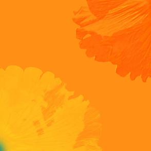 Blossoms on Summer Zest Sunshine (large)