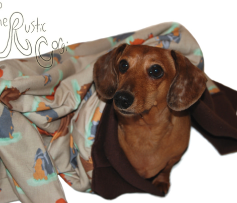 Standing Longhaired Dachshunds - tan linen
