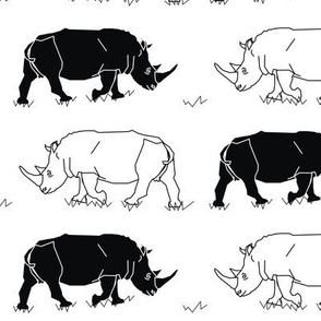 Black & White Rhinos