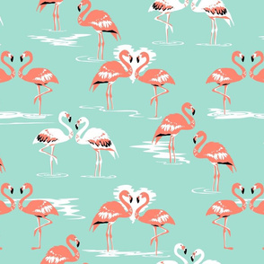Flamingos love mint
