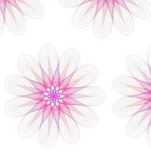 Spiro's Pinky