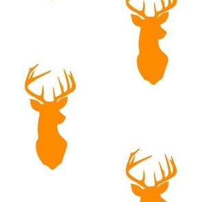 orange buck