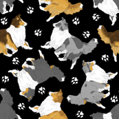 Trotting Shelties and paw prints - black