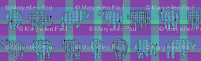 rhino_plaid2