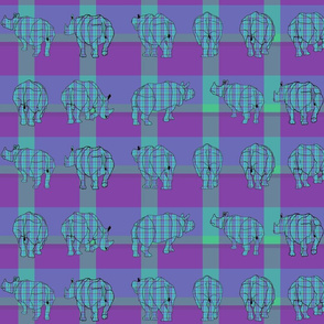 rhino_plaid3