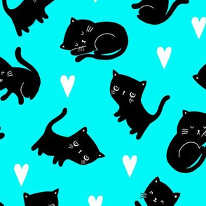 Black Cat-Teal Colorway