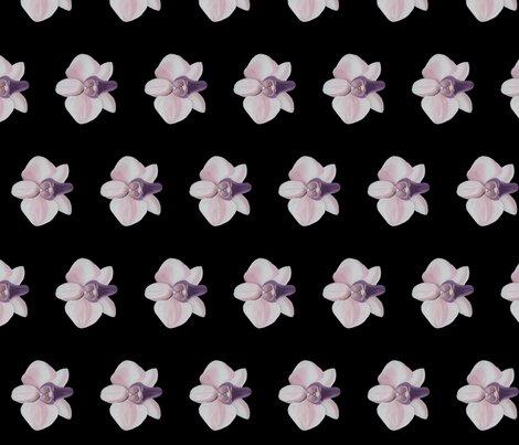 Rrlilac_orchid_black_side_shop_preview