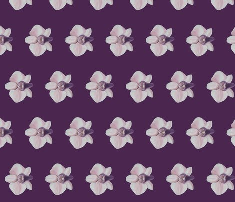 Rrlilac_orchid_side_shop_preview